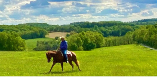 Herm Gailey : A Lifetime With Horses